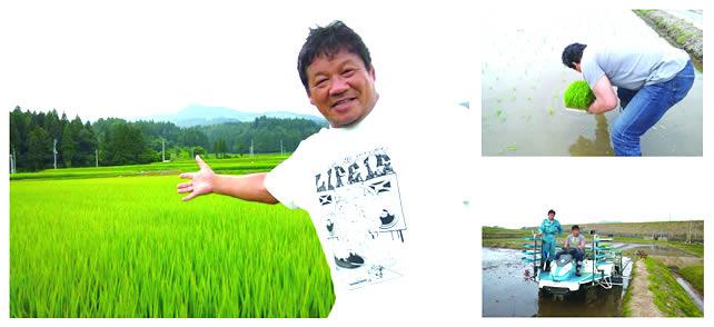 南魚沼の自然、最高の雪解け水に育まれたお米です。苗床作りからやりました。
